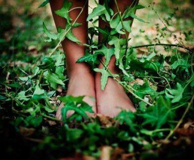 radicamento e piedi sull'erba