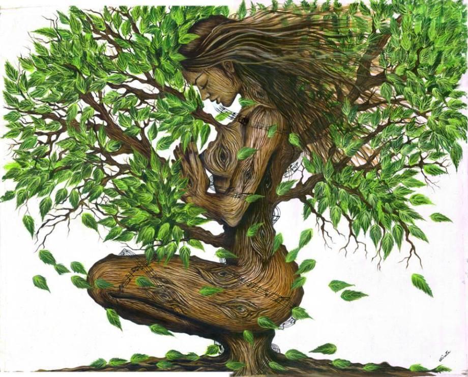 donna, natura, bellezza, foglie, radici, albero,